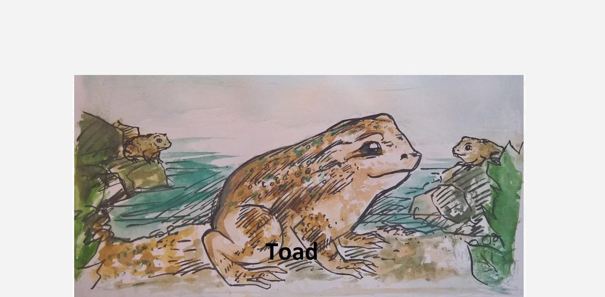 Cute Toad – Inktober